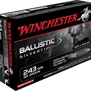 WINCHESTER BALLISTIC-SILVERTIP 95 FOR SALE